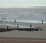 jenny-hughes-low-tide-orig