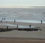 jenny-hughes-low-tide